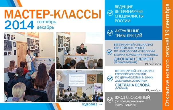 fV_sTt-tCAs.jpg