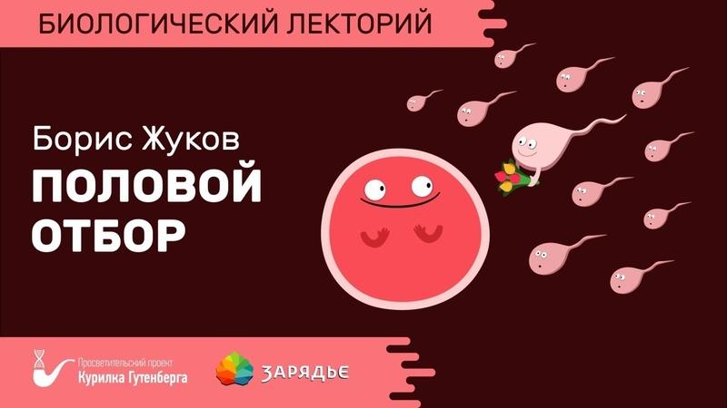 Биолекторий Половой отбор Борис Жуков