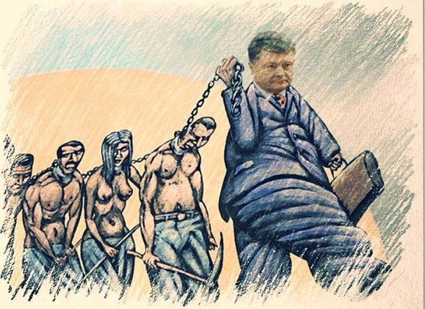 Генпрокуратура готова участвовать в антикоррупционном совещании Яценюка, - прокурор Куценко - Цензор.НЕТ 6174