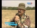 Перед овцеводами Ставрополья - новые задачи.