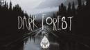 Dark Forest 🦇 - An Indie/Folk/Alternative Playlist | Vol. 2 (Halloween 2018)