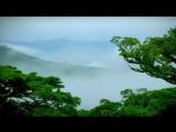 Побег в Коста-Рику (2 серия)