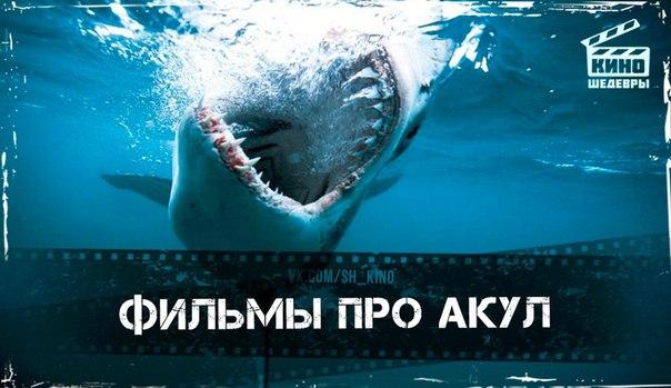 Подборка завораживающих фильмов про жутких акул ????