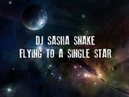 DJ Sasha Snake - FLYING TO A SINGLE STAR part 7 (Vinyl mix)