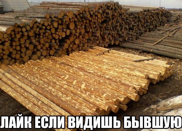 http://cs7056.vk.me/c7008/v7008596/22566/OwBT4-gS0CA.jpg