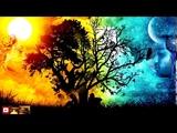 Музыка Для Сладких Снов Обретение Гармонии Здоровья во Сне Волшебные Дельта Волны