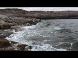 на берегах Арктиды