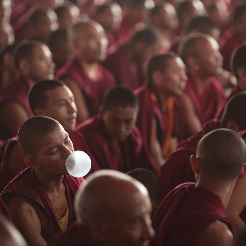 монах и жвачка