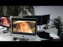 Гендальф на мониторах в офисе