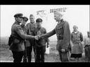 Warum hatte Adolf Hitler den Krieg gewollt?