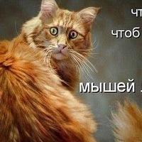 ИринаДегтярева