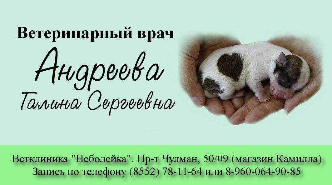 ветеринар, Набережные Челны