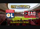 Франция. Лига 1. Лион - Генгам