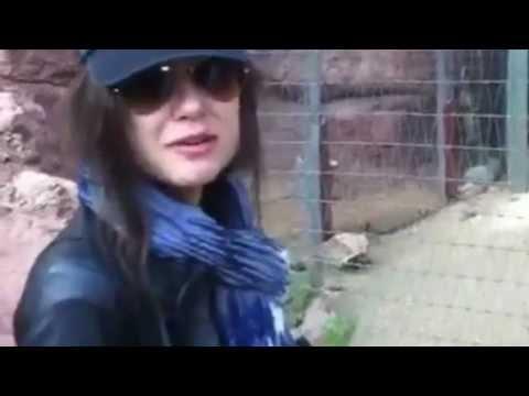 Sasha grey at the zoo
