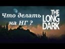 Стрим-The Long Dark/ Выживание/ Прохождение/ НГ/ Что делать на НГ ?