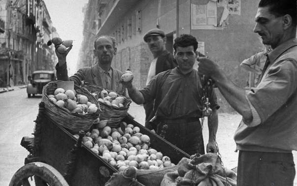 Сицилийская мафия и рынок лимонов  история с кислыми параллелями для современных потребителей