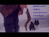 деревянный бивень мамонта и холодный налимчик (wooden mammoth Tusk and cold burbot)