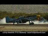 P-51 Mustang -