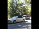 Движение на главной автотрассе Сочи парализовано из за упавшего дерева