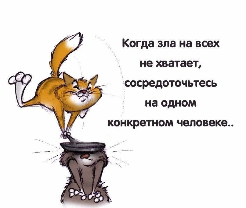 https://pp.userapi.com/c7002/v7002231/4087b/WhIvwxpZFQ4.jpg