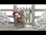 NoPostie from Carte Blanche Greetings (Tatty Teddy Montage)