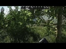 Escape from tarkov suicide_virusTV пробный запуск