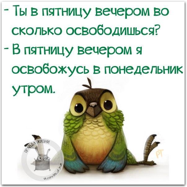 https://pp.vk.me/c543106/v543106123/1f7a1/EPM9uDM_ZeI.jpg