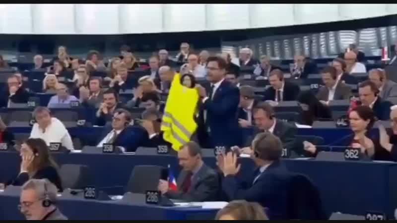Strasburgo, Angelo Ciocca della Lega lascia l'aula: tira fuori un gilet giallo contro Emmanuel Macron