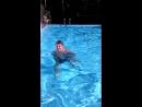 любимый купается