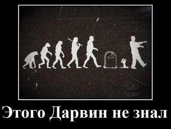 смотреть фильм онлайн россия 2013 гость боевик