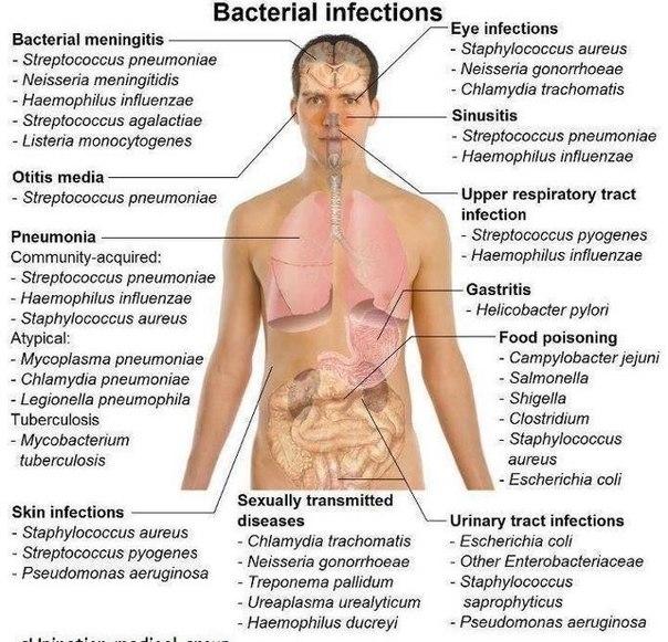 Вирус папилломы человека лечение на шейке матки