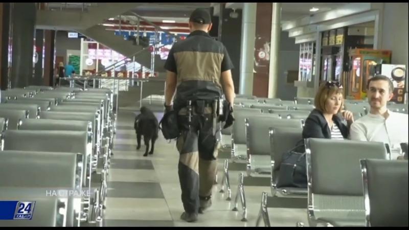 О работе транспортных полицейских на телеканкле ХАБАР 24