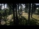 Red dead redemption 2 (прохождение ) 27 PS4 Live