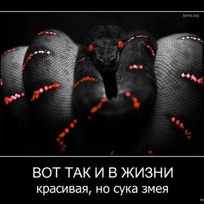 Жанна Белякова, 19 ноября , Елец, id16064628
