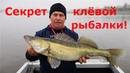 Трофейная рыбалка в ноябре Секрет клёвой рыбалки