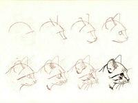 Рисуем котиков правильно.  Хотите научиться рисовать котиков, но не знаете с чего...