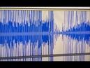 Голоса привидений / Ghost voices. 17-09-2018 9.30Л/L /031