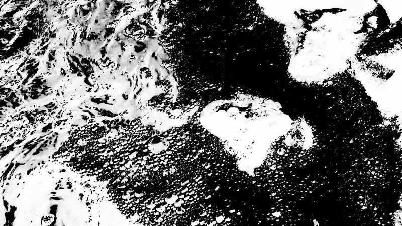 William Basinski - Disintegration Loop d p 1.3