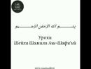 Шейх Шамиль Аш-Шафиий - О, рабы Аллаhа, выполняйте свои деяния полноценно.mp4