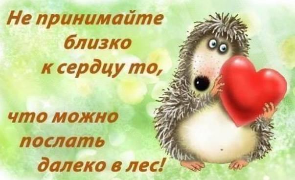 https://pp.userapi.com/c7008/v7008866/22b0d/6akCaACvUqs.jpg