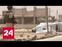 В Сочи стартует десятый раунд переговоров по Сирии Россия 24