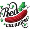 Фотостудия Red Cucumber Art & Photo
