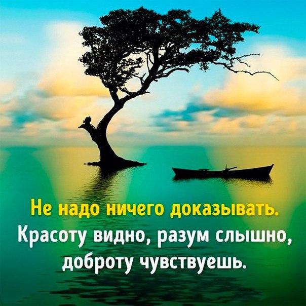 Фото -35114569