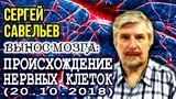 ВЫНОС МОЗГА #61 Происхождение нервных клеток. 20.10.2018. Савельев С.В.