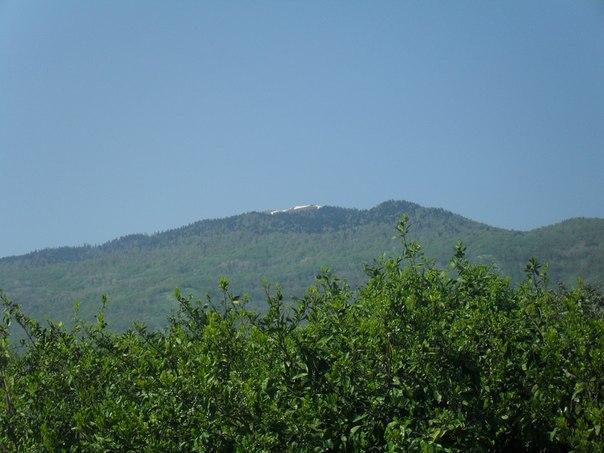 Мандарины и горы