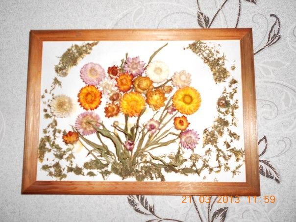 картинки из сухих цветов: