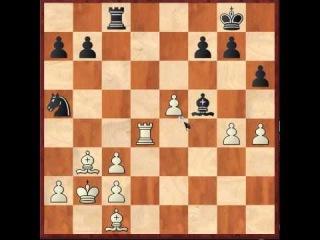 Шахматы. Оценка позиции и выбор плана игры