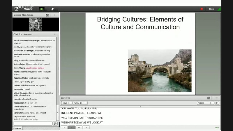 AE Webinar 2.4 - Cross-Cultural Communication Strategies in the English Language Cl...