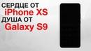 Смартфон с сердцем iPhone XS и душой Galaxy S9, страшно-забавные роботы Boston D и другие новости!