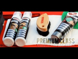Очиститель для кожи SONAX Premium Class (www.bilichenko.org)